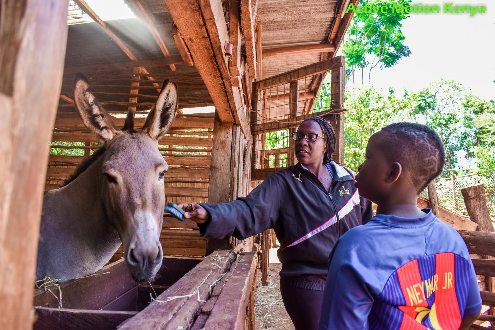 Playing with Reza the donkey at Mlango Farm, Limuru.